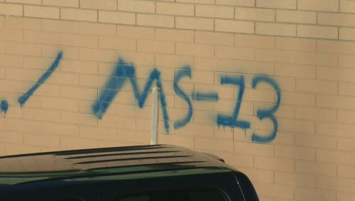 Gang Graffiti Investigated At John Costello School Watch