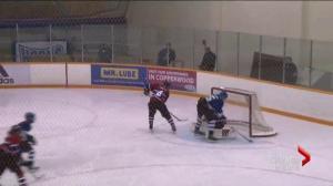 Lethbridge hockey officials want to ban hitting in bantam