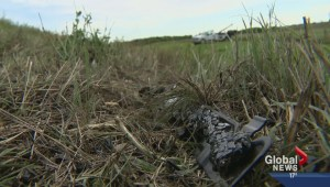 Fatal crash second in less than a week for Sask. community