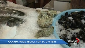 Canada-wide recall for BC oysters
