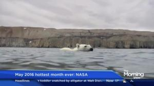 May 2016 hottest month ever recorded: NASA