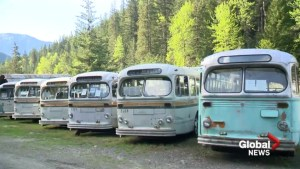The ghost buses of Sandon, B.C.