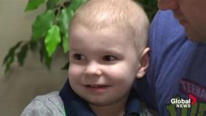 Nova Scotia boy battling cancer has Disney wish granted with help from Ninja Turtles