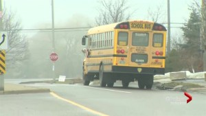 Parents in Brampton call for bus driver to be replaced after kids dropped home an hour late