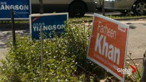 Home security footage shows vandals damaging election signs