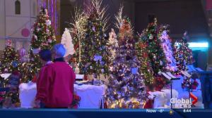 Festival of Trees kicks off the holidays in Edmonton