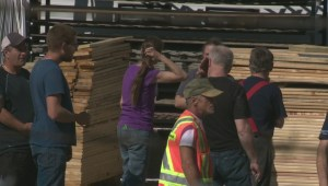 Several people trapped after shelves collapse at Edmonton lumber store