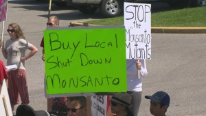 Dozens March Against Monsanto in Kelowna
