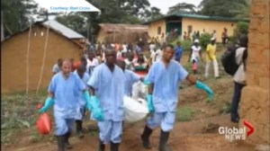 Canadian doctor feels Ebola outbreak will likely not spread to Canada