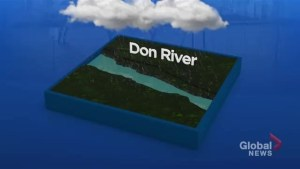 How much rain it will take to flood the Don River?
