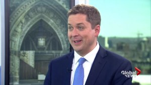Conservative Party unity cannot be taken for granted: Scheer