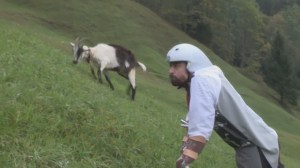 Man uses prosthetic extensions to live with Alpine goat herd