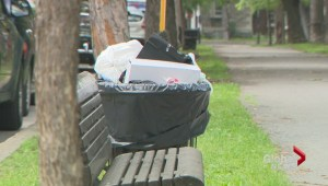 Sud-Ouest garbage backlash