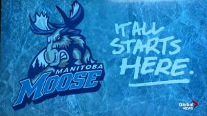 Manitoba Moose name and logo unveiled in video