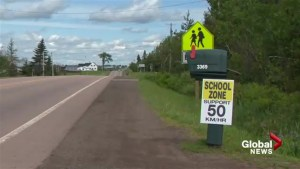 Company hired to look at safety of school zone just outside of Moncton