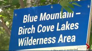 Public Meeting – Blue Mountain Birch Cove Regional Park