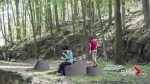 Granite tree stumps
