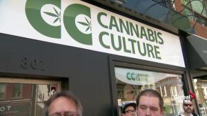 Marc Emery compares raids on cannabis dispensaries to 1981 bathhouse raids in Toronto