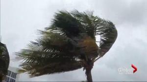 Hurricane Matthew expected to damage U.S. east coast