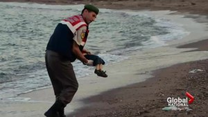 What has changed one year after drowning of Syrian refugee child Alan Kurdi?