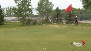 Calgary golfers trapped on course after power lines fall during storm