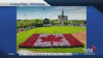 201 Portage Canada Day Living Maple Leaf Saturday