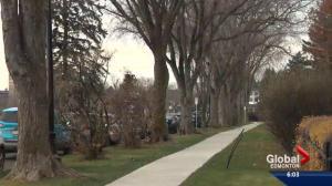 Time for restraint: Edmonton mayor