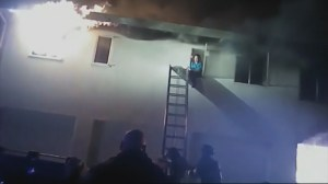 Dramatic rescue of residents and dogs in huge California apartment fire