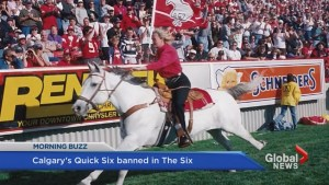 Stampeders' horse barred from BMO Field sidelines