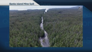 First Nation Chief Clarence Innis on impact of Yellow Giant gold mine spill