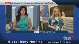 Attempted kidnapper in court