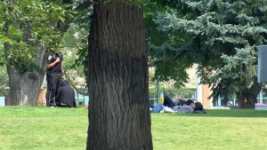 How Lethbridge's vulnerable people are beating the heat