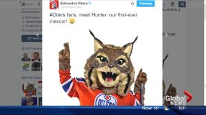 Do you like the Edmonton Oilers new mascot Hunter?