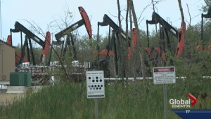 Oil's crash threatens to derail booming Alberta