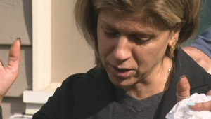 Aunt of drowned Syrian boys speaks out