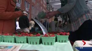 Alberta government launches farmers market app