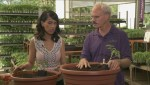 Gardenworks: Planting Tomatoes