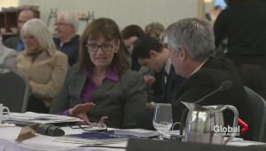 Hospital plans for the Horizon Health Network