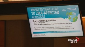 Alberta women nervous to travel as Zika spreads