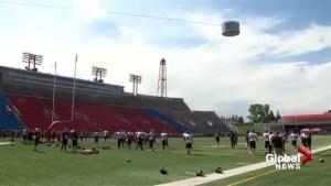 Calgary Stampeders seasoned vets used to tough training camp