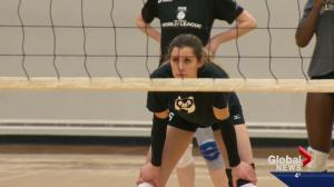 U of A volleyball star approaching record