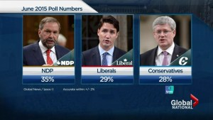 Polls continue to show upswing for NDP four months before federal election
