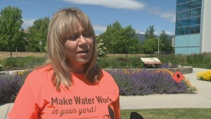Okanagan mayors call for water conservation as flood concern continues