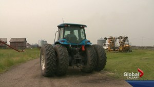 Southern Alberta farmers hit hard with hail damage