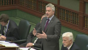 Progressive Conservative MPP cites Global News report in legislature