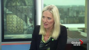 Paris is not about national emissions targets: McKenna