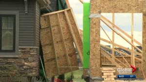 Edmonton cleans up from worst windstorm in years