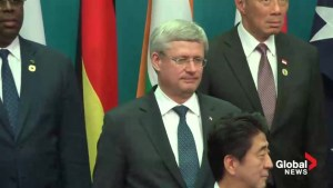 Harper delivers stern message to Putin at G20 summit