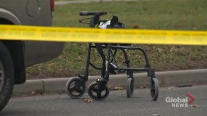 Toronto police reconstruct scene of fatal pedestrian collision in North York