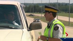 What role do auxiliary officers play in the RCMP?